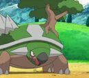 Pokémon de Paul/Polo