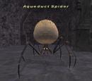 Aqueduct Spider