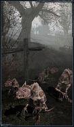 Stalker shadow of chernobyl patch 10001 worldwide travel
