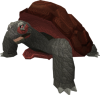 [Request/Guide] Wilderness Warbands. 200px-War_tortoise