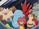EP264 Pokémon capturados (3).png