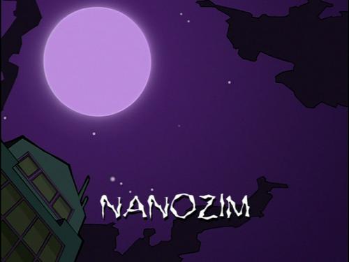NanoZIM