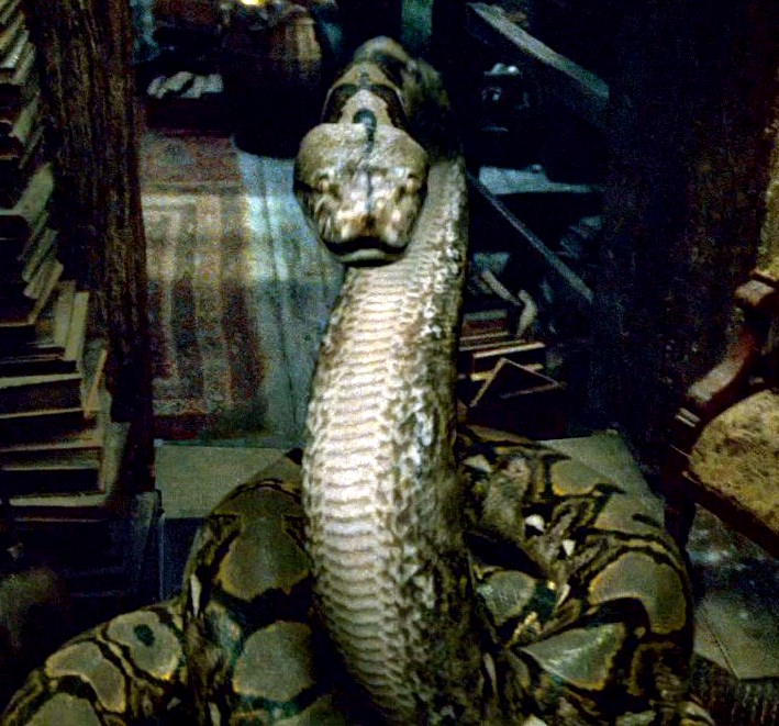 Talk:Nagini - Harry Potter Wiki - Wikia