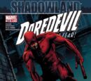 Daredevil Vol 1 508