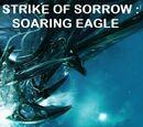 Strike Of Sorrow : Soaring Eagle
