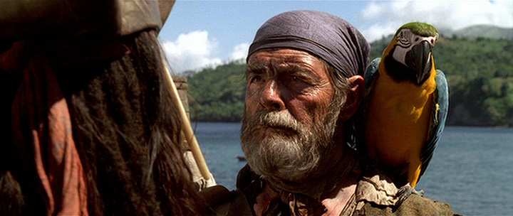 Cotton pirates of the caribbean wiki the unofficial - Monsieur pirate ...