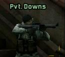 Private Downs