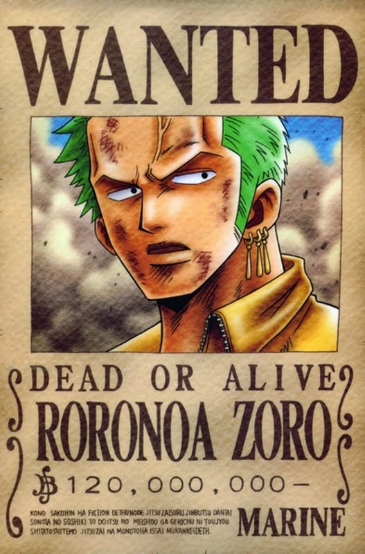 Roronoa <b>Zoro</b> - <b>One Piece</b> Wiki 2014