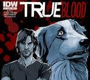 Comic Book Series - True Blood 2
