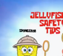 Jellyfishing Safety Tips