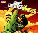 Marvel Universe Vs. The Punisher Vol 1 2