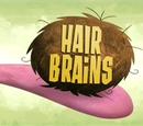 Hair Brains