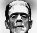Frankenstein's Monster