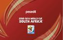 Südafrika-Patch-3.png