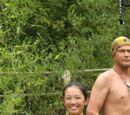 China Tribes