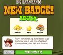 Big Barn Hands Badge