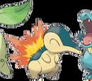 Johto Starter Pokémon