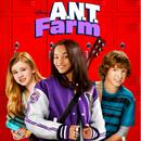 Antfarm.png