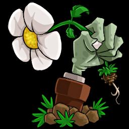 free play plants vs zombies