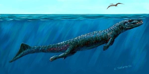 Image - Dakosaurus Andiniensis - 29.1KB
