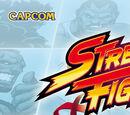 Street Fighter World Warrior Encyclopedia