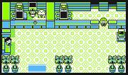 Centro Pokémon InteriorAm
