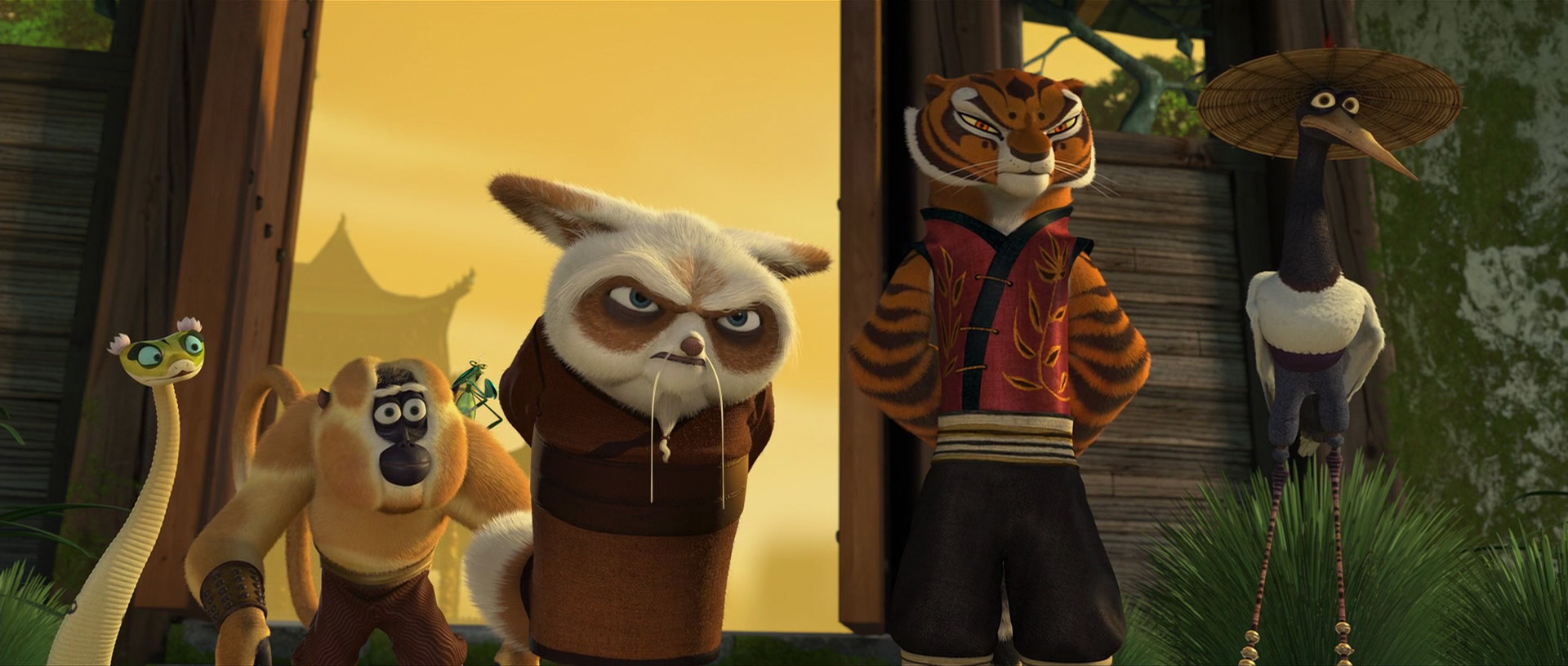 Shifu five - Kung fu panda shifu ...