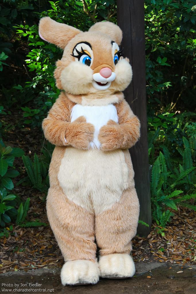 Miss Bunny Nude Photos 74
