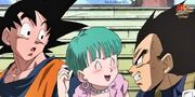 Bulma and the Saiyans