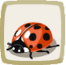 Icon Ladybug.png