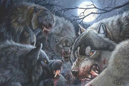 Werewolf_pack.jpg