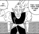 Elder Kaioshin (Universe 9)