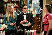 THE-BIG-BANG-THEORY-The-Pulled-Groin-Extrapolation-Season-5-Episode-3-10