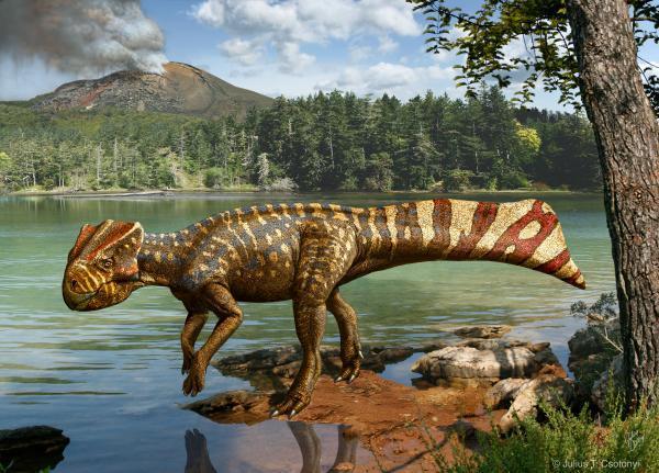 Koreaceratops-Julius-T_-Csotonyi.jpg