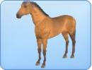 Breed-h03.png