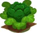 Crop Broccoli.png