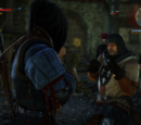 Fistfighting in The Witcher 2