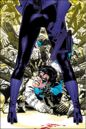 Nightwing 0072.jpg