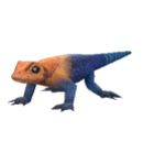 Agama Lizard.png