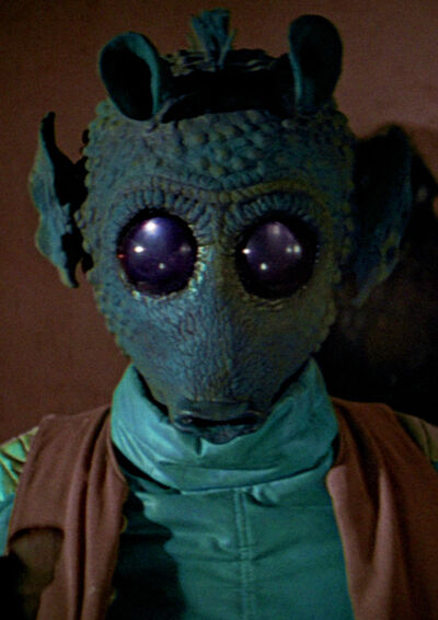 That's actually greedo!  http://img1.wikia.nocookie.net/__cb20111104205225/starwars/images/thumb/c/c6/Greedo.jpg/400px-Greedo.jpg