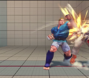 Super Combos by Fighter