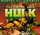 Hulk Visionaries: Peter David Vol 1 4