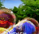 Disney Channel (International)/Bounce and Ribbon Idents and Bumpers