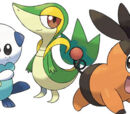 Pokemon the way to the championship