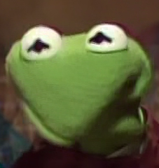 Kermit's reaction to the patting episode of Little ...