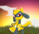 Sai the Riolu