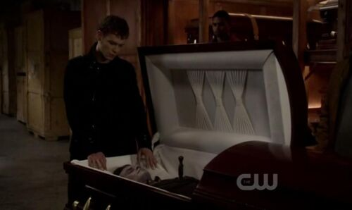 Silver Daggers - The Vampire Diaries Wiki