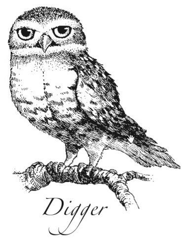 Digger – Die Legende der Wächter Wiki – Kathry Lasky, Bücher ... David Wenham