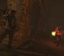 Co-op Shade Survival