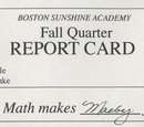 Boston Sunshine Academy